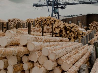 Holz-Industrie